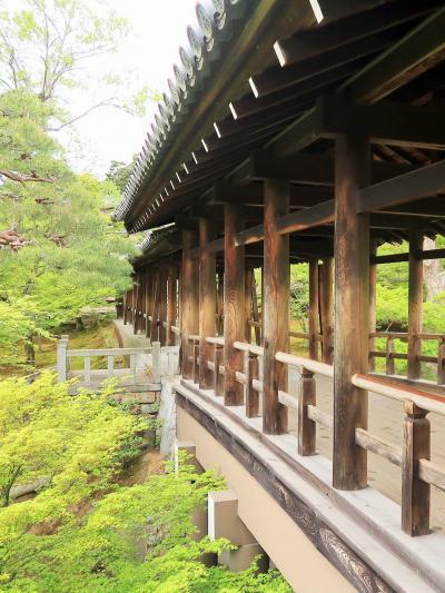 京都平成09 東福寺b 通天橋 -思索的な空間/ひとり- ☆洗玉澗-青もみじ/色さまざまに