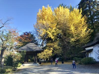 2018年11月 秋川渓谷ハイキングで紅葉狩り