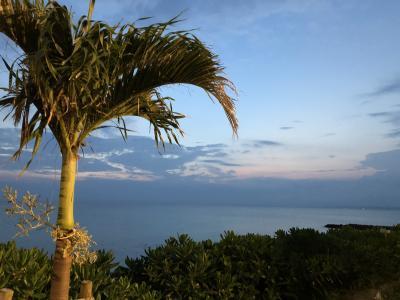 初めての海水浴は宮古島へ。東急ホテル&リゾートに泊まる旅【一日目】