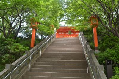 東京散歩 河和田町から箱根山・穴八幡から早稲田駅周辺を歩きました。
