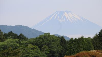 早起きして箱根へ。富士山を見ながら朝食、芦ノ湖散策、銀かつ亭でランチ。早朝ドライブもいいもんです。