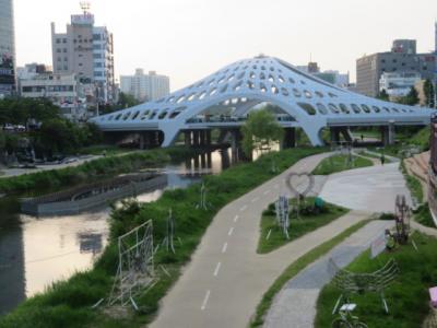 韓国 「行った所・見た所」 大田・儒城温泉の足湯入湯と中央市場散策