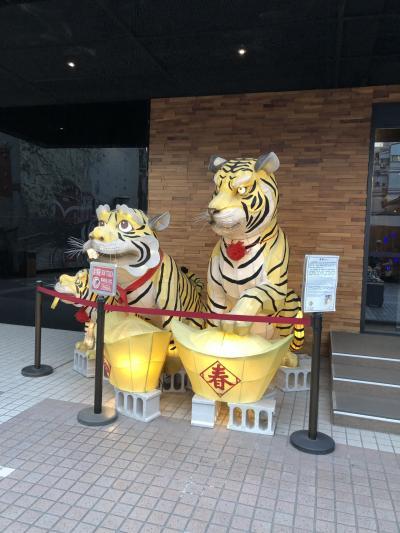 【台湾旅行】台北Mホテル/老牌牛肉拉麺大王【Day 1】