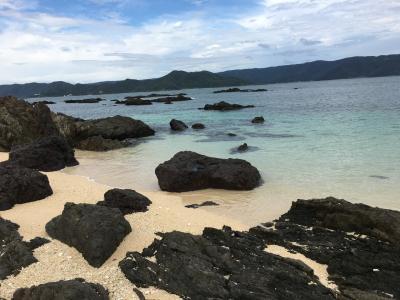 いもーれ奄美大島 は、刺激が多い島でした!