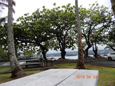 ハワイ島 {1}ヒロ・リリオカラニ公園   2019.04. 24