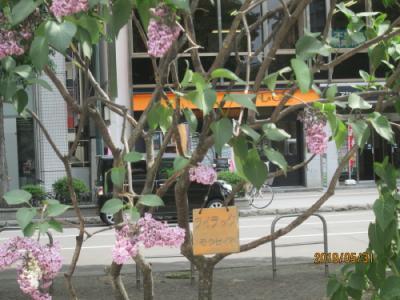 札幌の大通公園・西7丁目・漁民の像・他