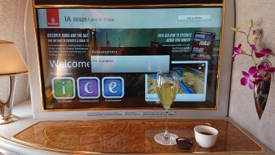 A380 エミレーツ航空 夢のファーストクラスの旅最終日 ドバイ編 (タンザニア、エジプト、ドバイ)