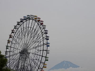 散歩・東名高速道路富士川SA周辺で観覧車と富士山を見ながら 2019.06.02