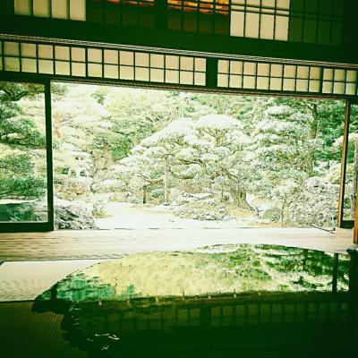 そうだ!京都に行こう~新緑を求めて1日目
