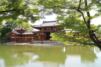 2019GW 京都伏見・宇治への電車旅 その2 宇治