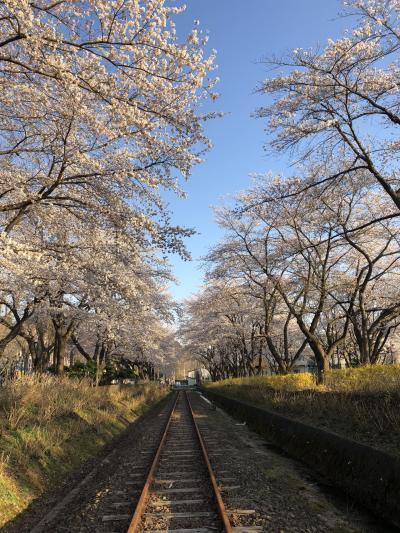 2019GWは鉄とARTを求めて青森秋田。1日目