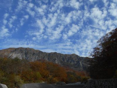 秋の大山・・紅葉(黄葉)の見ごろです。