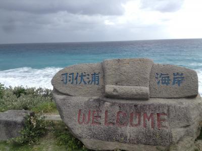 やっぱ離島は泊まるべし!シリーズ★初・東京の離島を女ひとりっぷ③新島を4時間で観光せよ!