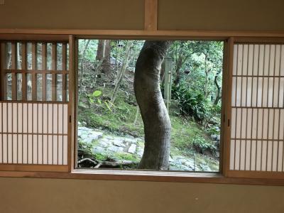 6月の旅 ④ ~ 四条河原町~長楽寺 そして東福寺 +京都タワー