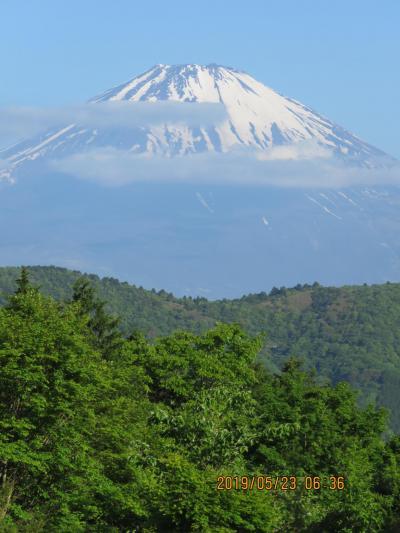 令和元年も箱根温泉旅行をしました⑪素晴らしい富士山を眺める