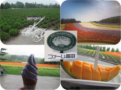 新緑の北海道(11)【富良野】ファーム富田は雨でしっとり