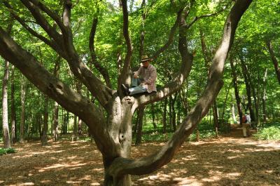 森を愉しむ♪ 最高のフィトンチッド 「 赤城自然園 」