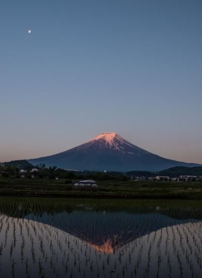 今年初めての山中湖ロッジ滞在 ~田んぼに映り込んだ富士山を狙って~
