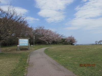能登の春(28)緑剛崎灯台へ。