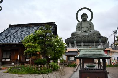 高岡大仏と射水神社