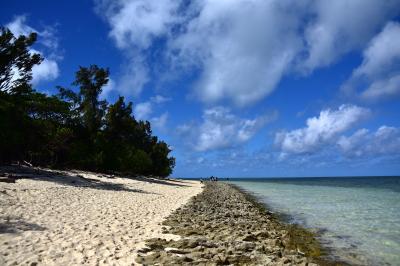 8月のグレートバリアリーフ、ケアンズのGreen Islandへ