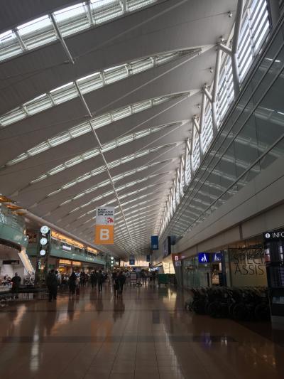 今年2回目国内線搭乗記録   久しぶりの札幌出張