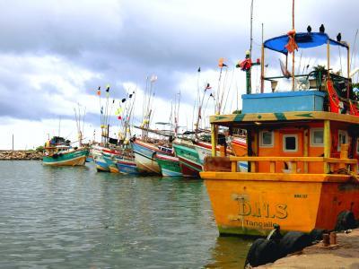 2018年 10月 スリランカ・タンガッラ ローカルエリア&漁港ぶらぶら