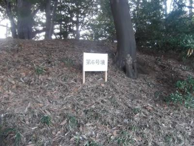 多摩川台公園の古墳群: 東京23区内に古墳群があった