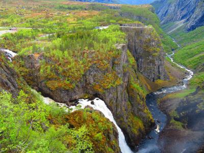 ノルウェー大自然に触れる旅 2019 ハダンゲルフィヨルドの大自然 「フィヨルドの女王」の絶景を堪能します。 ⑤後編