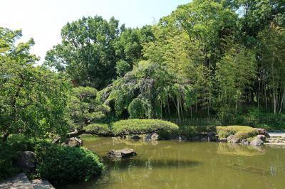 庭園を見に平塚総合公園(神奈川平塚市)へ・・・