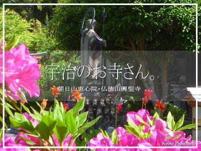 宇治のお寺さん。 朝日山恵心院・仏徳山興聖寺