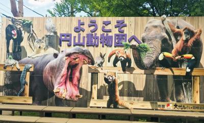 日帰り札幌 円山動物園