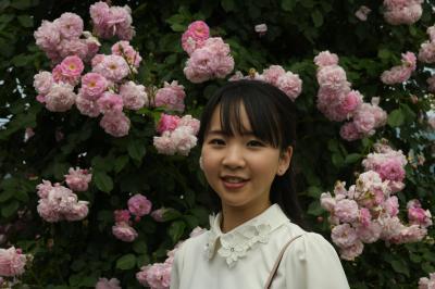 華麗です'信州中野一本木公園薔薇まつり'