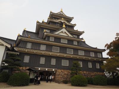 2019.04 桜と庭園巡る春旅(5)路面電車に乗って、日本百名城の岡山城に行ってみよう