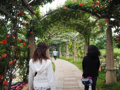 友人と「日本一の薔薇回廊と南アルプスのさくらんぼ狩り食べ放題」日帰りバスツアーへ♪