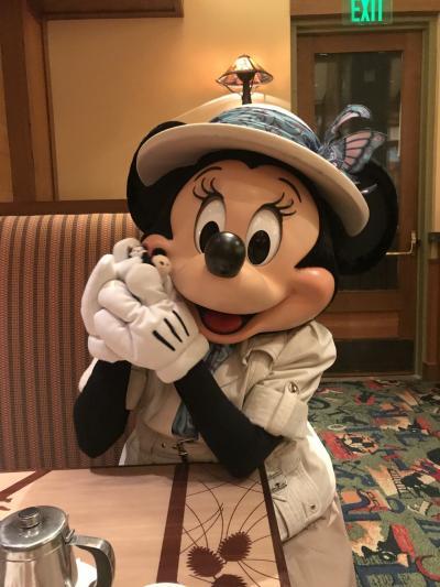 2019 JALエコノミーでひとりカリフォルニアディズニー3泊5日♪ Day4&5 ストーリー・テラー・カフェ☆彡