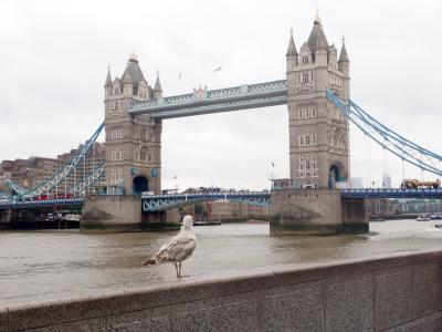 サクッとタダ乗り世界一周 何日やったらビジネスクラスが取れますか? ③雨のロンドン