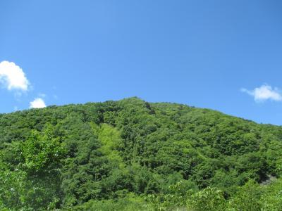 新緑と青空が美しい西沢渓谷