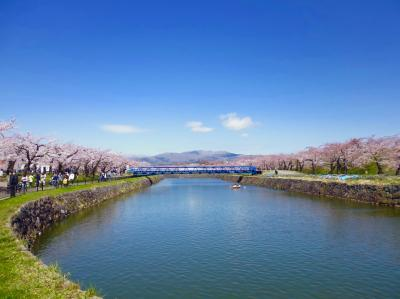 桜咲く街歩く