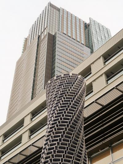 乃木坂-2 写真歴史博物館を見学 東京ミッドタウンで ☆案内人の名解説を伺い(撮影×)