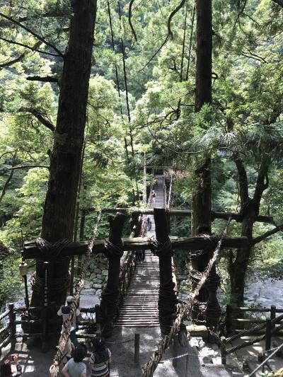 粗谷かずら橋。 JAL どこかにマイルの旅-3
