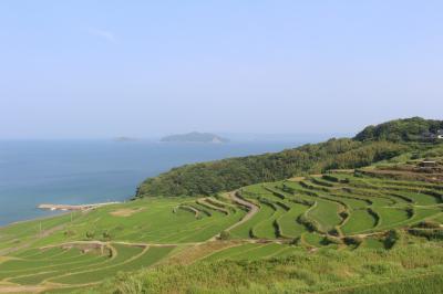 長崎に行ってみました。九十九島の景色が目当てでしたが、土谷棚田がすばらしかったです。その2九十九島、土谷棚田編