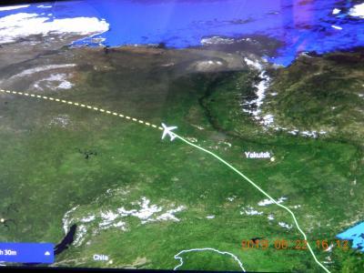 初大陸上 バルト海クルーズ : 成田⇒SAS⇒コペンハーゲン 大洋上空より変化が有り面白い。