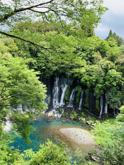 富士山の湧水が生む至福うどんと極上ビール
