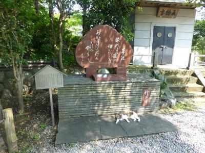 【2019年6月】横須賀一泊お墓参り2日目  走水神社を訪れる【母娘おば散歩】
