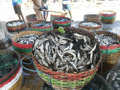 祝結婚15周年記念 10連休2019GWバリ島 ジンバランにあるバリ島で一番大きいと言われている魚市場とランチ