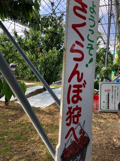 令和になって初の東京観光+山梨さくらんぼ狩りツアーの3日目はメインのさくらんぼ狩りツアーで山梨へ!!