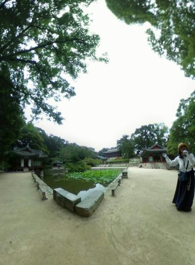 宣靖陵~昌徳宮(ソウル:韓国) 2019.6.18