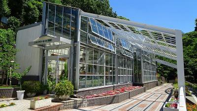 池田市 緑化植物園の見学 下巻。