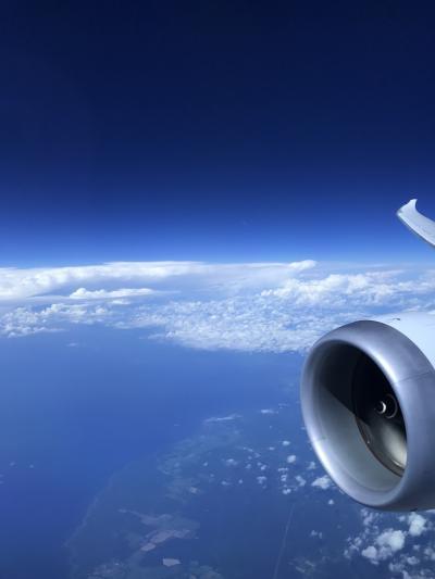 ポーランド航空ビジネスクラスに乗ってみた